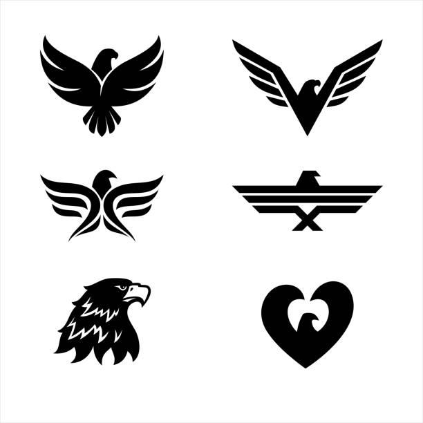 illustrations, cliparts, dessins animés et icônes de ensemble de 6 aigles - aigle