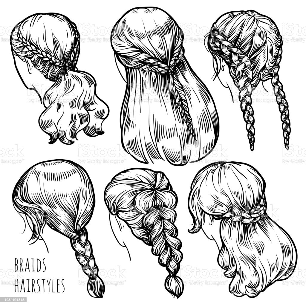 Set Of 6 Womens Braids Hairstyles Stock Illustration Download