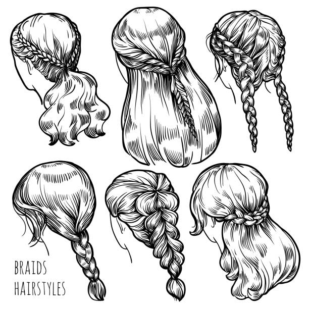 Best French Braid Illustrations Royalty Free Vector