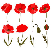 Poppy clip art elements ideal for different designs - greeting cards, invitations, patterns, textile.