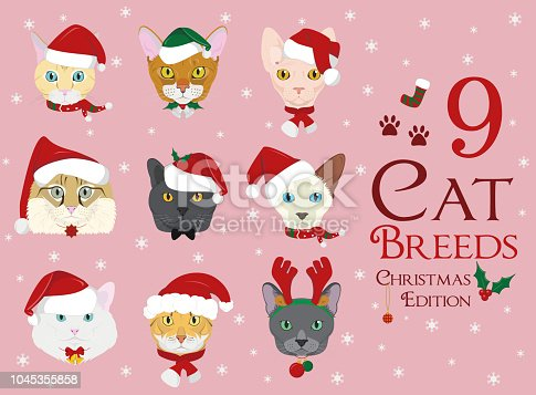 Set of 9 cat breeds with Christmas and winter themes