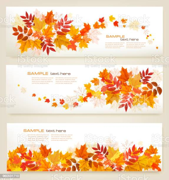 Set of abstract autumn banners with colorful leaves vector vector id960531710?b=1&k=6&m=960531710&s=612x612&h=ujdpurdzu1tnwccdxlhs cijlfllzltonya2hngtb24=