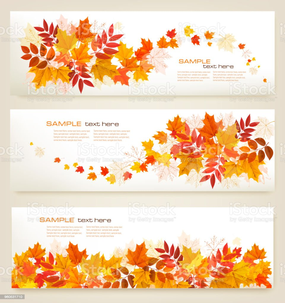 Set of abstract autumn banners with colorful leaves Vector vector art illustration