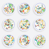 set of abstract colorful plant plate pattern for design.EPS10
