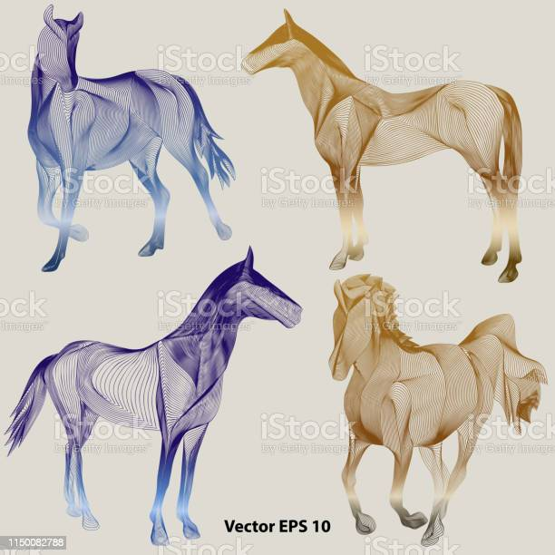 Set of abstract horses vector id1150082788?b=1&k=6&m=1150082788&s=612x612&h=f05ocqihvrvt6ihj 9geuiqklktyca4929ehr cknwg=