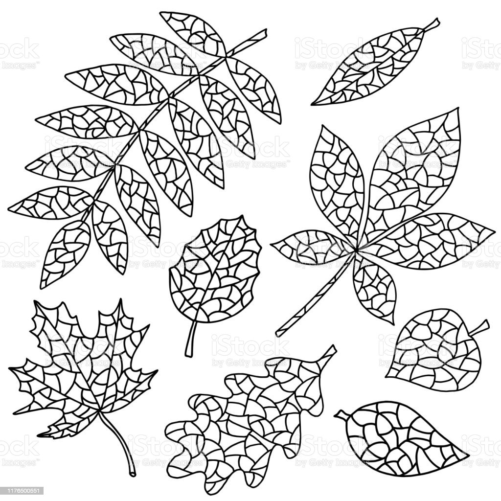 Set Of Abstract Leaves Coloring Page Stock Illustration Download Image Now Istock