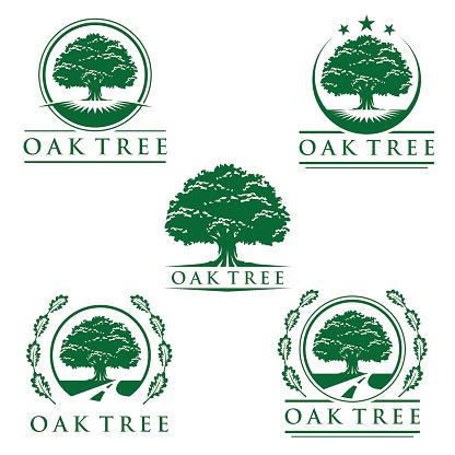 Set of abstract oak tree logo vector design