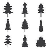 Set of abstract stylized balack trees silhouette. Vector illustration