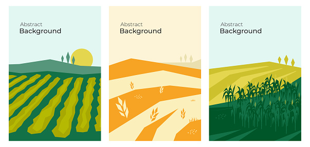 Set of abstract vector backgrounds with agricultural fields