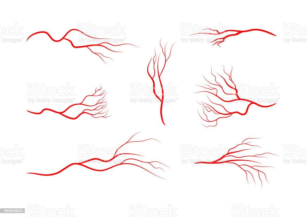 Ilustración de Conjunto De Resumen De Las Venas Los Vasos Sanguíneos ...