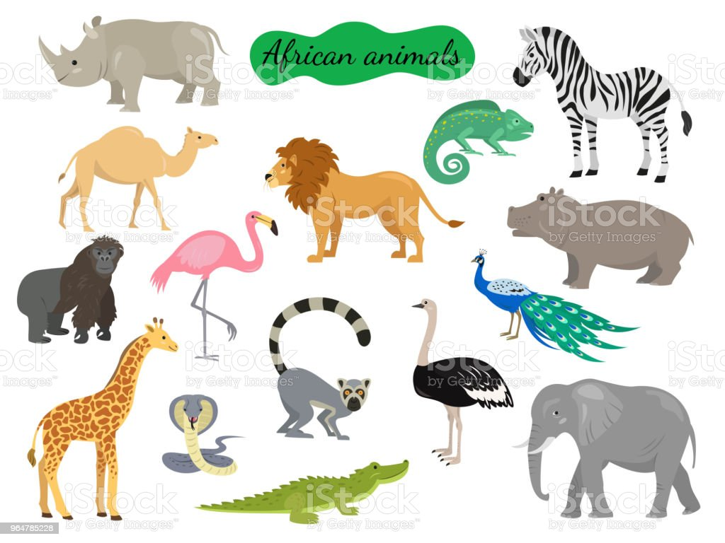 Set of african animals on white background. royalty-free set of african animals on white background stock illustration - download image now