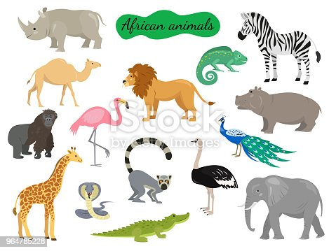 Set of african animals on white background. Vector illustration.