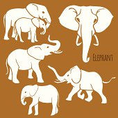 Set of African elephants in various poses.