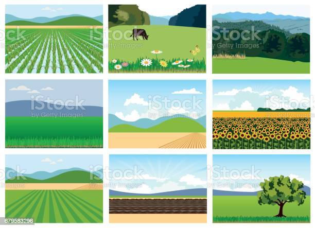 Set of agricultural fields vector id679583296?b=1&k=6&m=679583296&s=612x612&h=om4agst1 yonwhnwr2l1cuxs8vl4ajltr8pobm2pnxc=