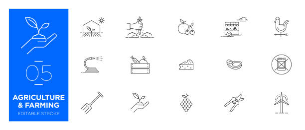 stockillustraties, clipart, cartoons en iconen met set van landbouw en landbouw line icons-moderne iconen - kas bouwwerk