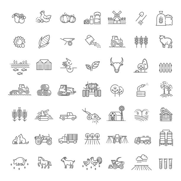Set of Agriculture and Farming Line Icons vector line icons. Agriculture and Farming icons harvesting stock illustrations