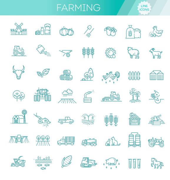 ilustrações, clipart, desenhos animados e ícones de jogo de ícones da linha da agricultura e da agricultura - corn farm