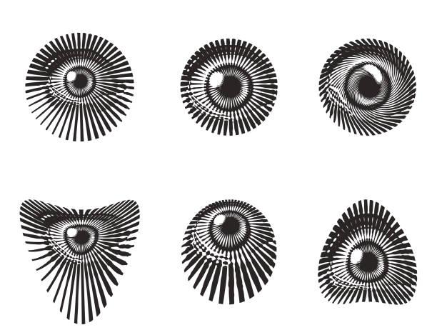 set of all seeing eyes - третье око stock illustrations