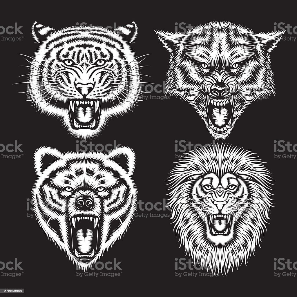 Set of Angry Animal Heads – Vektorgrafik