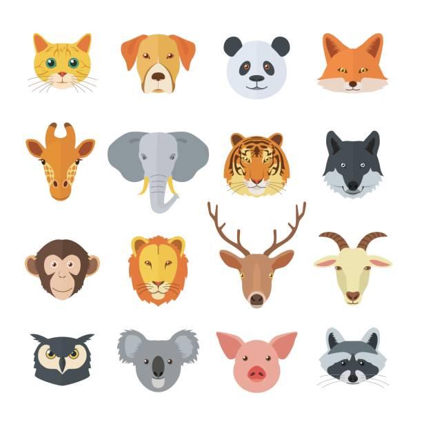 satz von tiergesichtern - tierkopf stock-grafiken, -clipart, -cartoons und -symbole