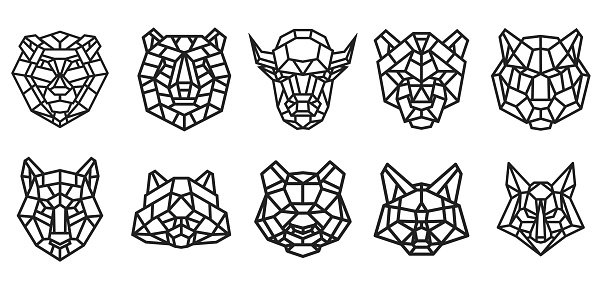 Set of animal head from lines in geometric polygonal style isolated on white color. Bear, bison, panther, panda, cat, lion, fox, wolf, tiger, raccoon. Modern graphic design element. Vector art.