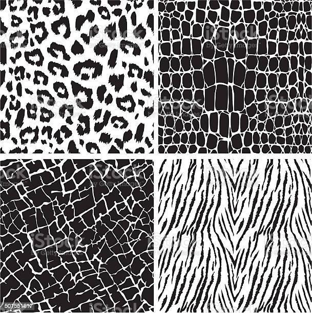 Set of animal skin seamless patterns vector id501551617?b=1&k=6&m=501551617&s=612x612&h=mo5gdibjip4voygita2cuqaovf2g1so7nckz1dyofv0=