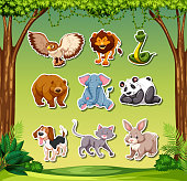 Set of animal sticker illustration