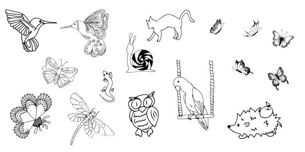 Set of animals and insects vector art illustration