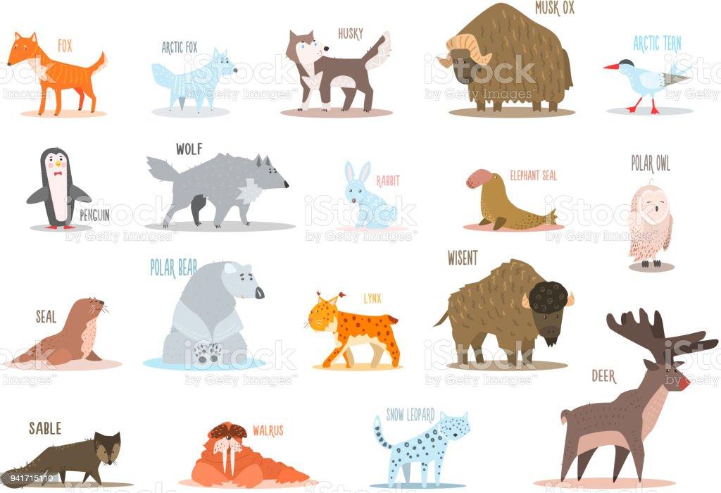 Ilustración de Conjunto De Animales Del Ártico Y El Antártico Zorro ...