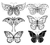 Set of art butterflies