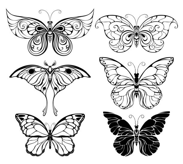 butterfly tattoos stock illustrations