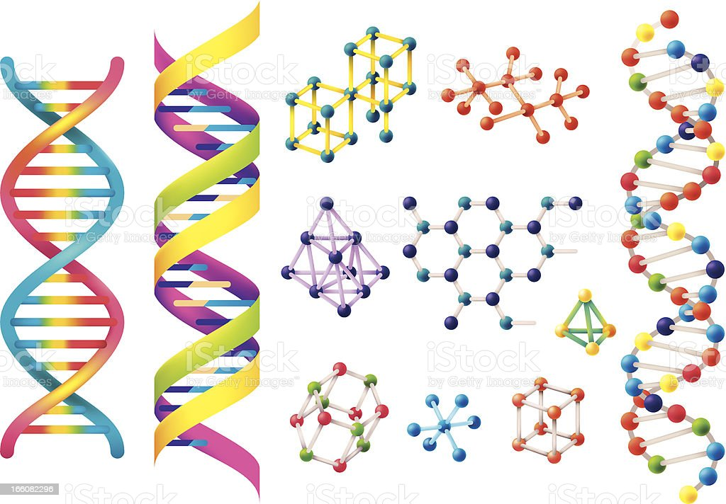 Set of assorted colorful DNA models vector art illustration