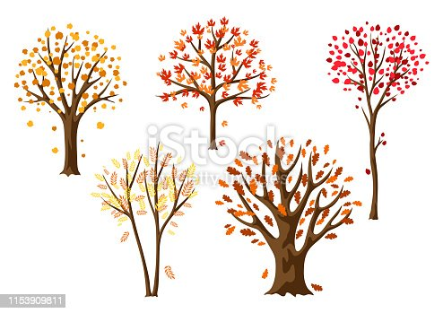 Set of autumn abstract stylized trees. Natural illustration.