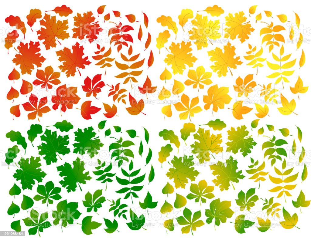 Set of autumn leaves isolated on white background. - Royalty-free Abstract stock vector