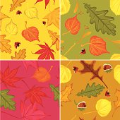 Set of four Autumn leaves patterns. Seamless Vector. EPS 8.