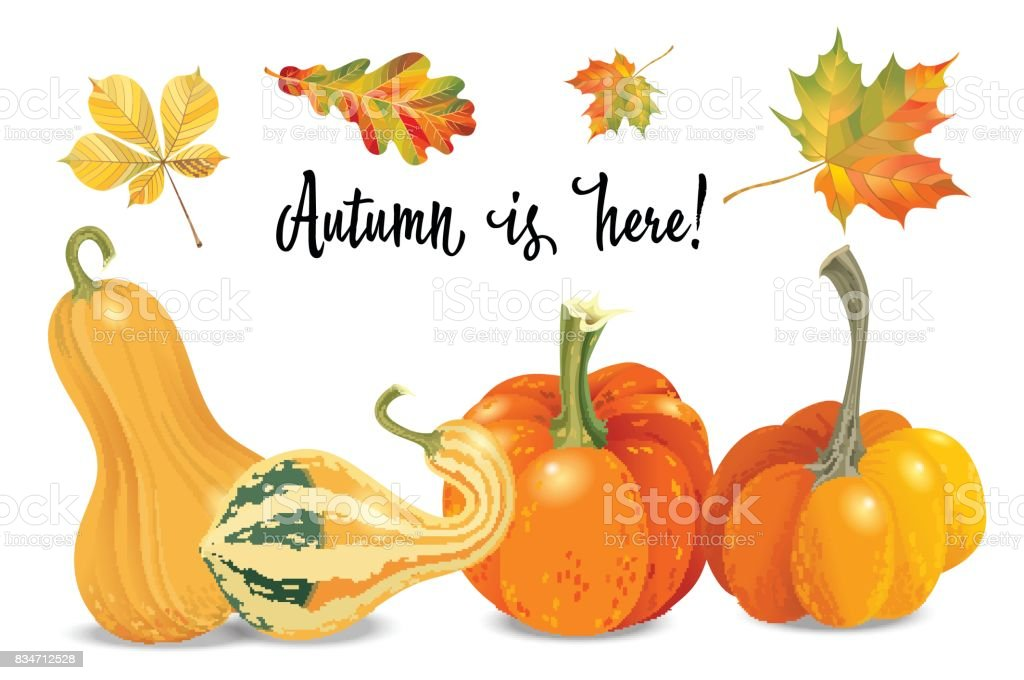 Royalty Free Autumn Picture Craft