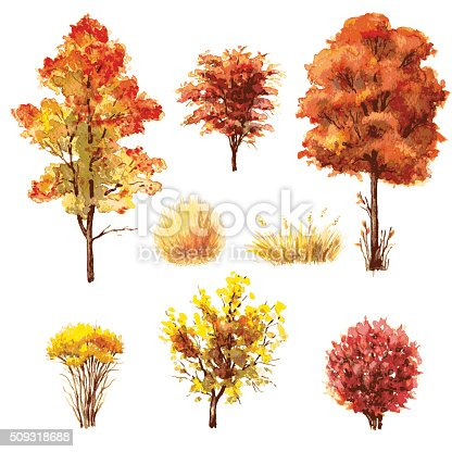 Hand drawn watercolor illustration. Set of various trees and bushes. Autumn plants isolated on white.