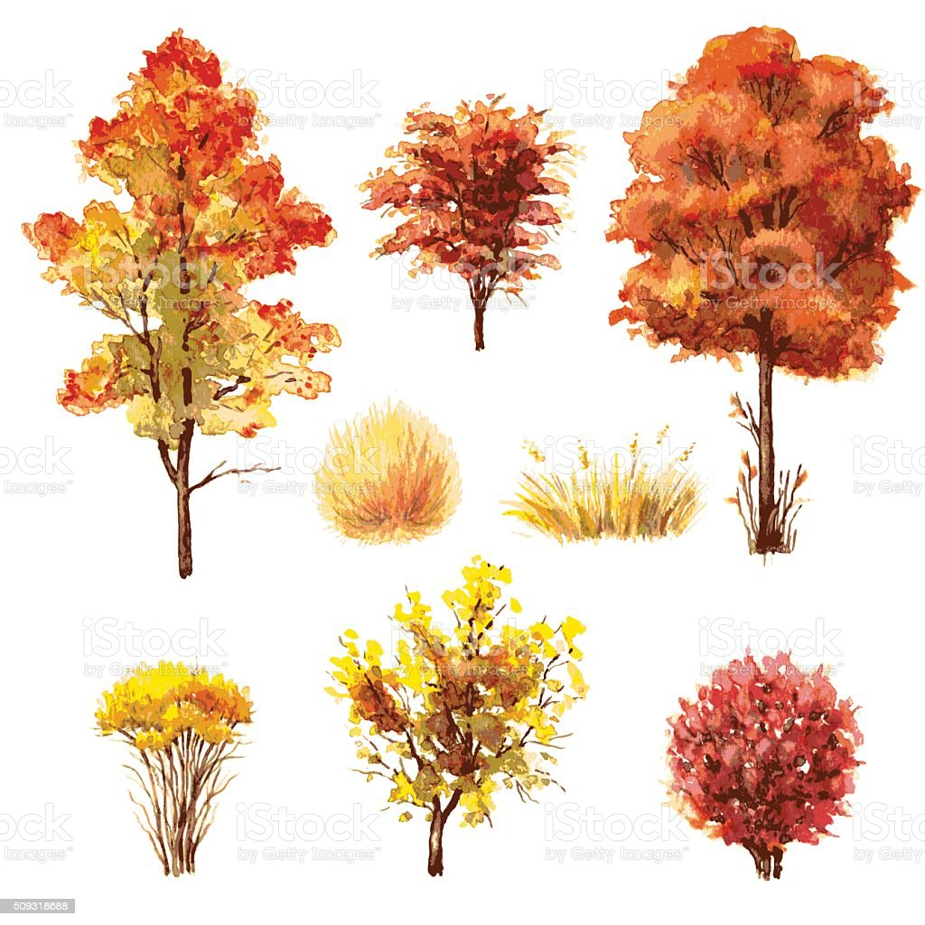 Set of autumn trees and bushes. vector art illustration
