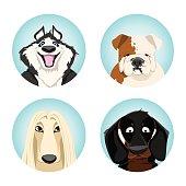 set of avatars dogs. pedigree dogs. vector illustration