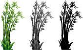 Set of bamboo plant illustration