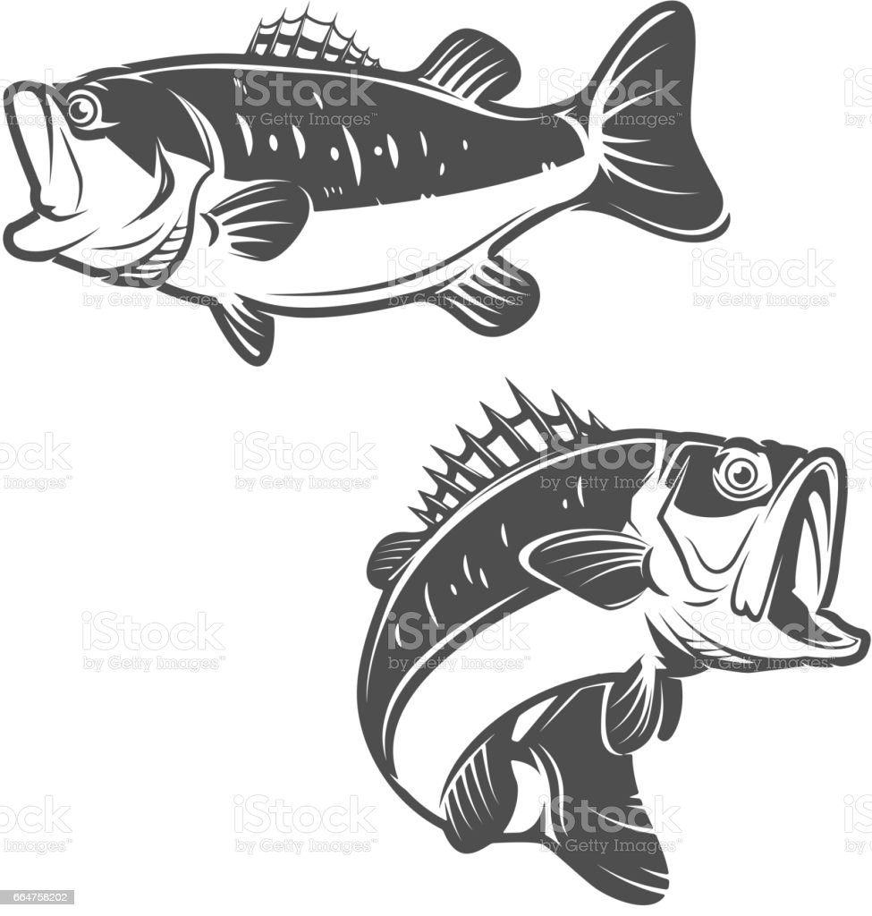 Set of bass fish icons isolated on white background. vector art illustration