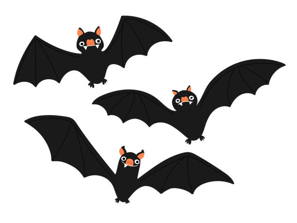 Set of bat illustrations vector art illustration