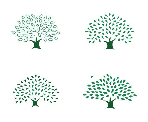 Set of beautiful four green oak tree logo identity vector art illustration
