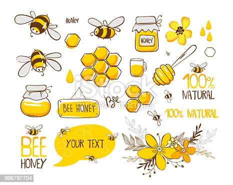 Set of bee, honey, lettering and other beekeeping illustration. Vector EPS10