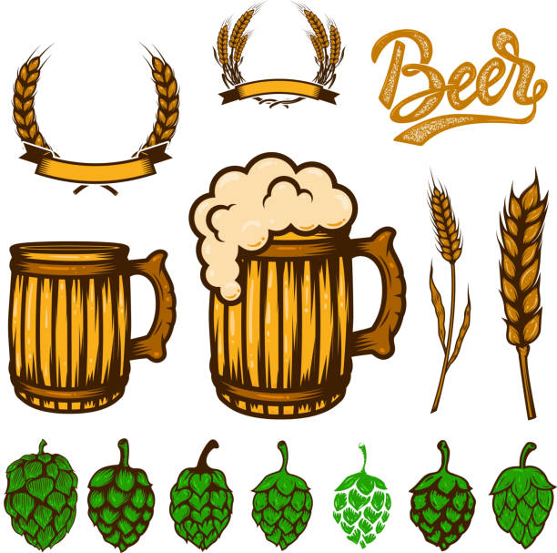 Set of beer design elements. Wheat spikelets, beer hop,mugs. For logo, label, emblem, sign, poster, banner, flyer. Set of beer design elements. Wheat spikelets, beer hop,mugs. For logo, label, emblem, sign, poster, banner, flyer. Vector image ale stock illustrations