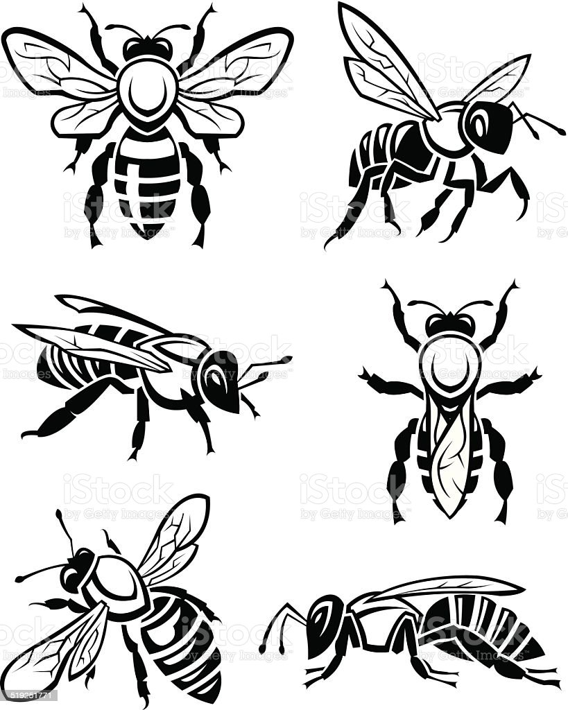 set of bees vector art illustration
