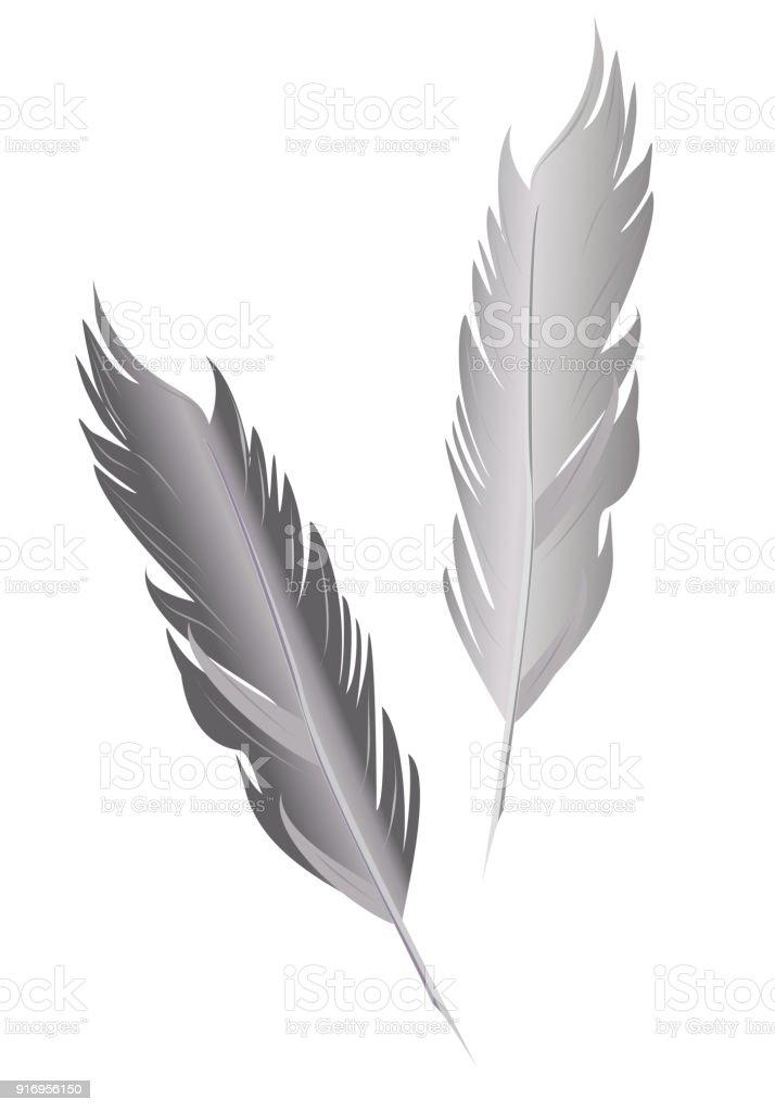 の鳥の羽 ふわふわのベクターアート素材や画像を多数ご用意 Istock