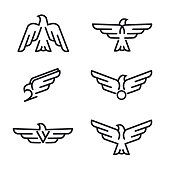 Set of birds predator line icons, isolated on white background. Template for your project. Vector illustration.