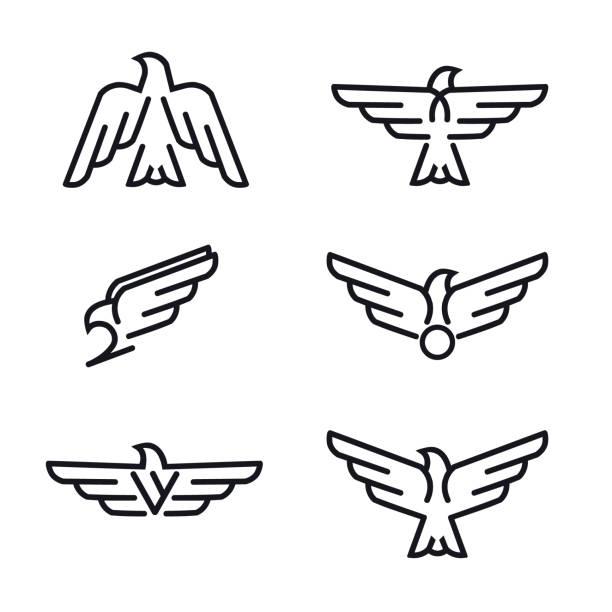 illustrations, cliparts, dessins animés et icônes de ensemble d'oiseaux prédateurs ligne icônes. - aigle