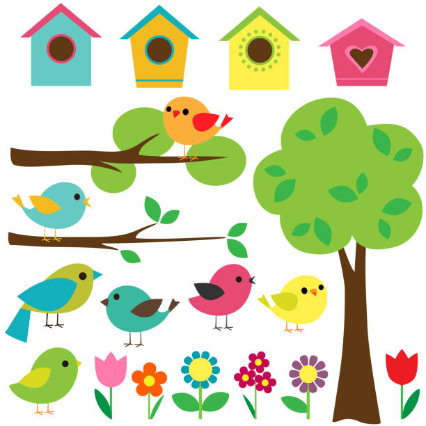 Set of birds Set birds with birdhouses, trees and flowers. bird clipart stock illustrations